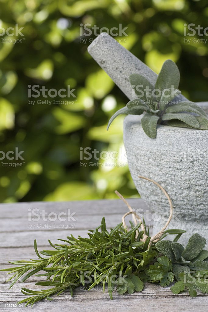 Pestle and mortar with herbs stock photo