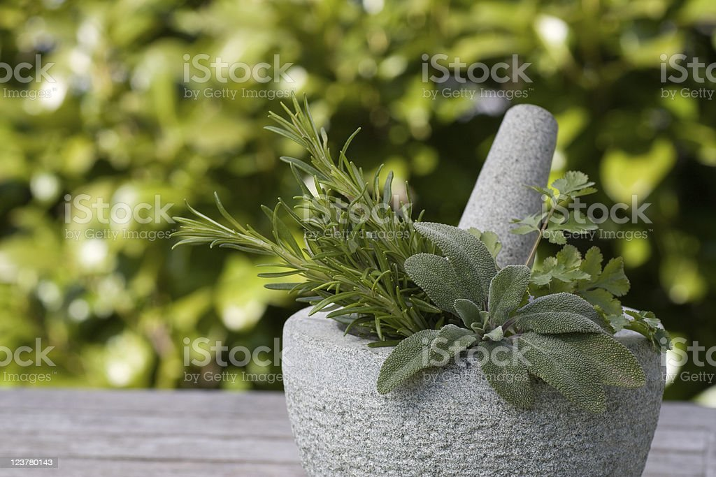Pestle and mortar with rosemary stock photo