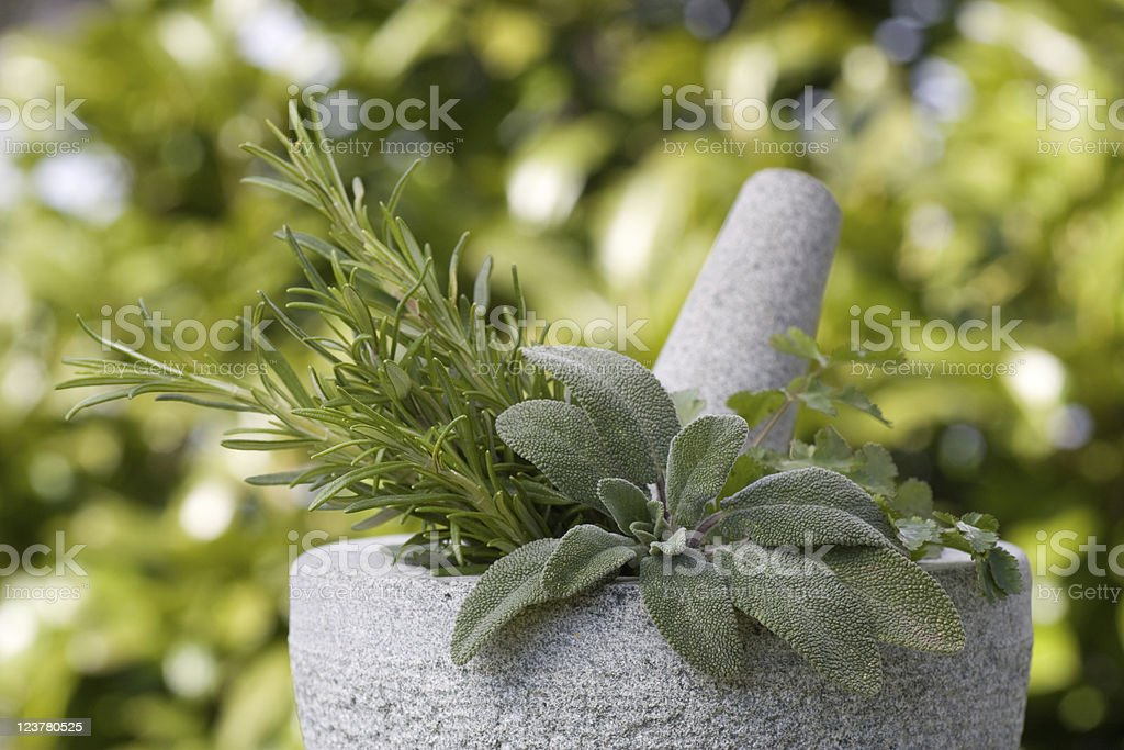 Pestle and mortar with various herbs stock photo