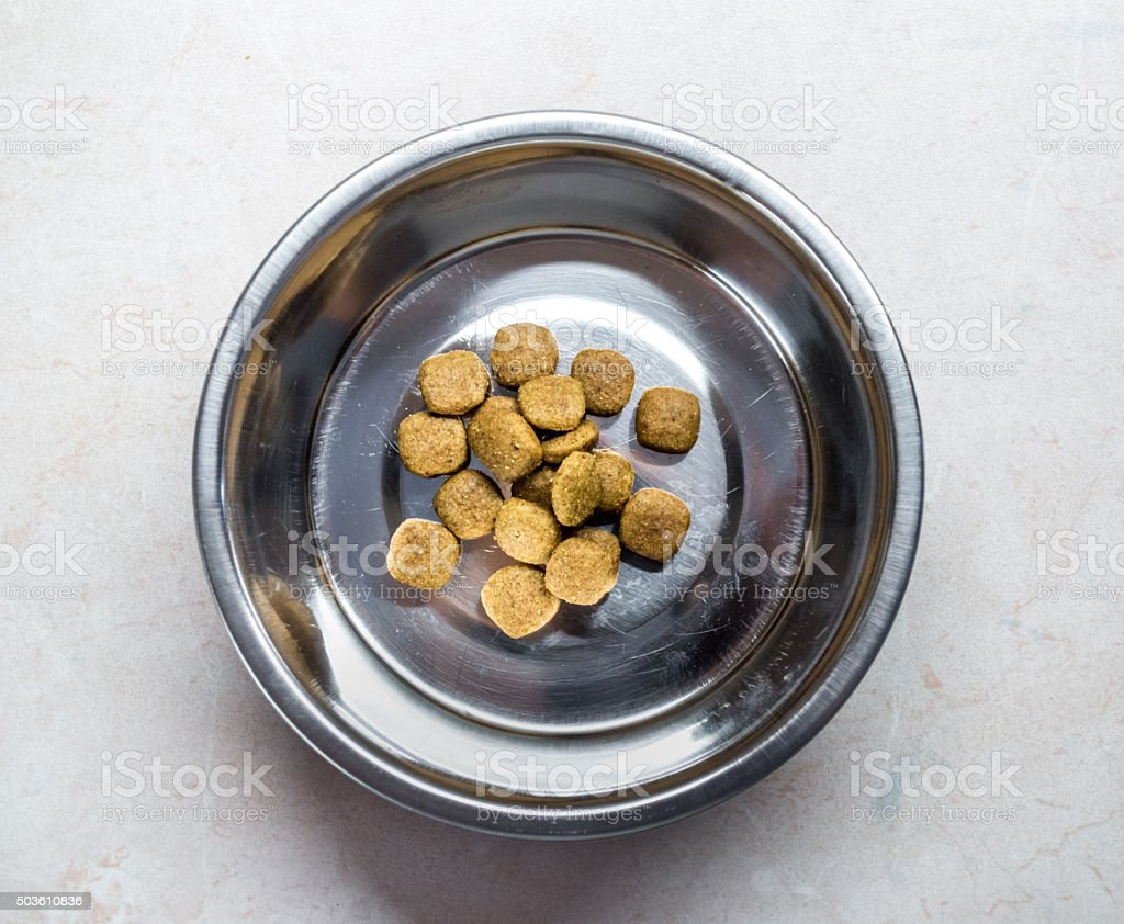 Pet Food in Bowl Overhead View royalty-free stock photo
