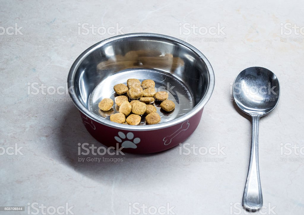 Pet Food in Bowl with Spoon Rear View royalty-free stock photo
