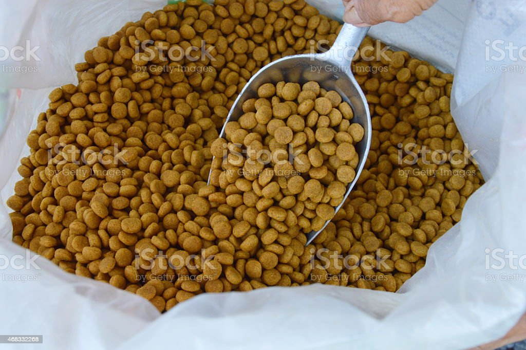 pet food on the scoop stock photo