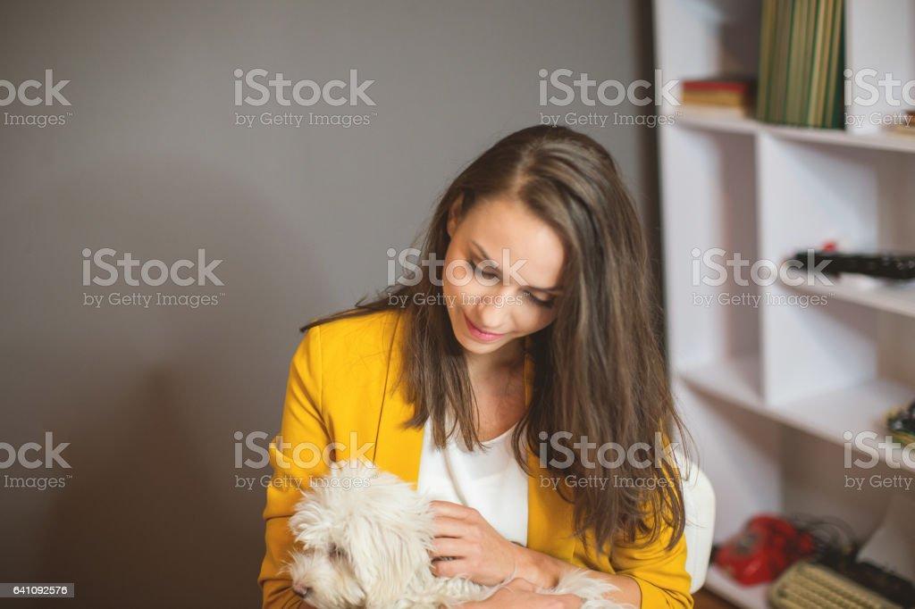 Pet friendly office stock photo