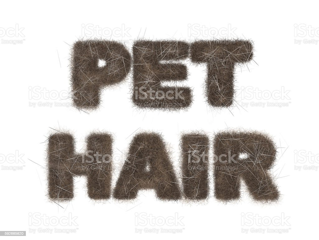 Pet Hair Text Illustration on White stock photo