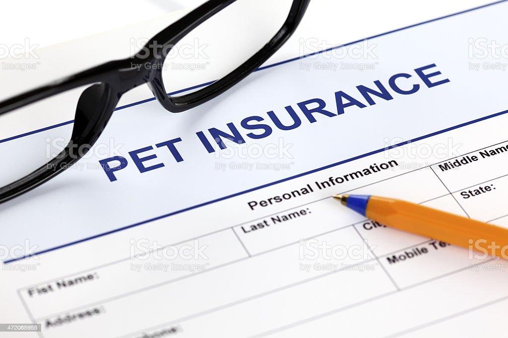 Pet insurance form stock photo