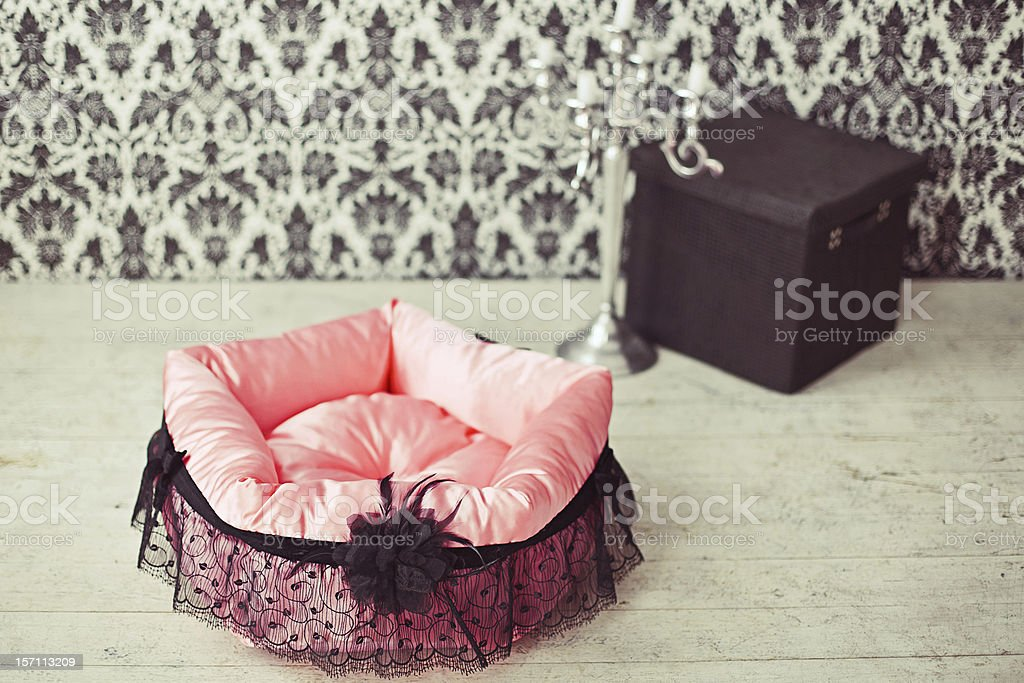 Pet mattress in the room royalty-free stock photo