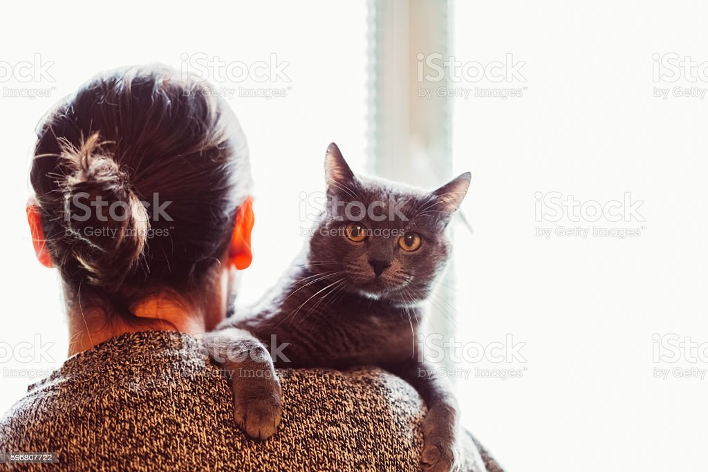 Pet owner with cat stock photo