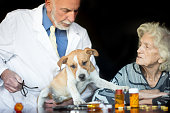 Pet Therapy in Assisted Living