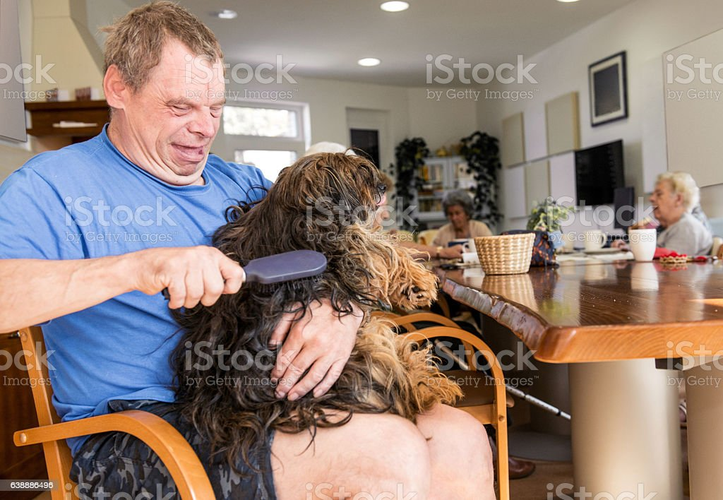Pet Therapy stock photo