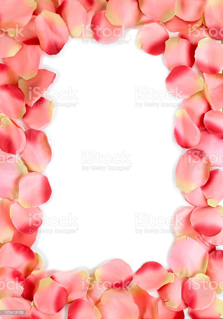 petal frame stock photo