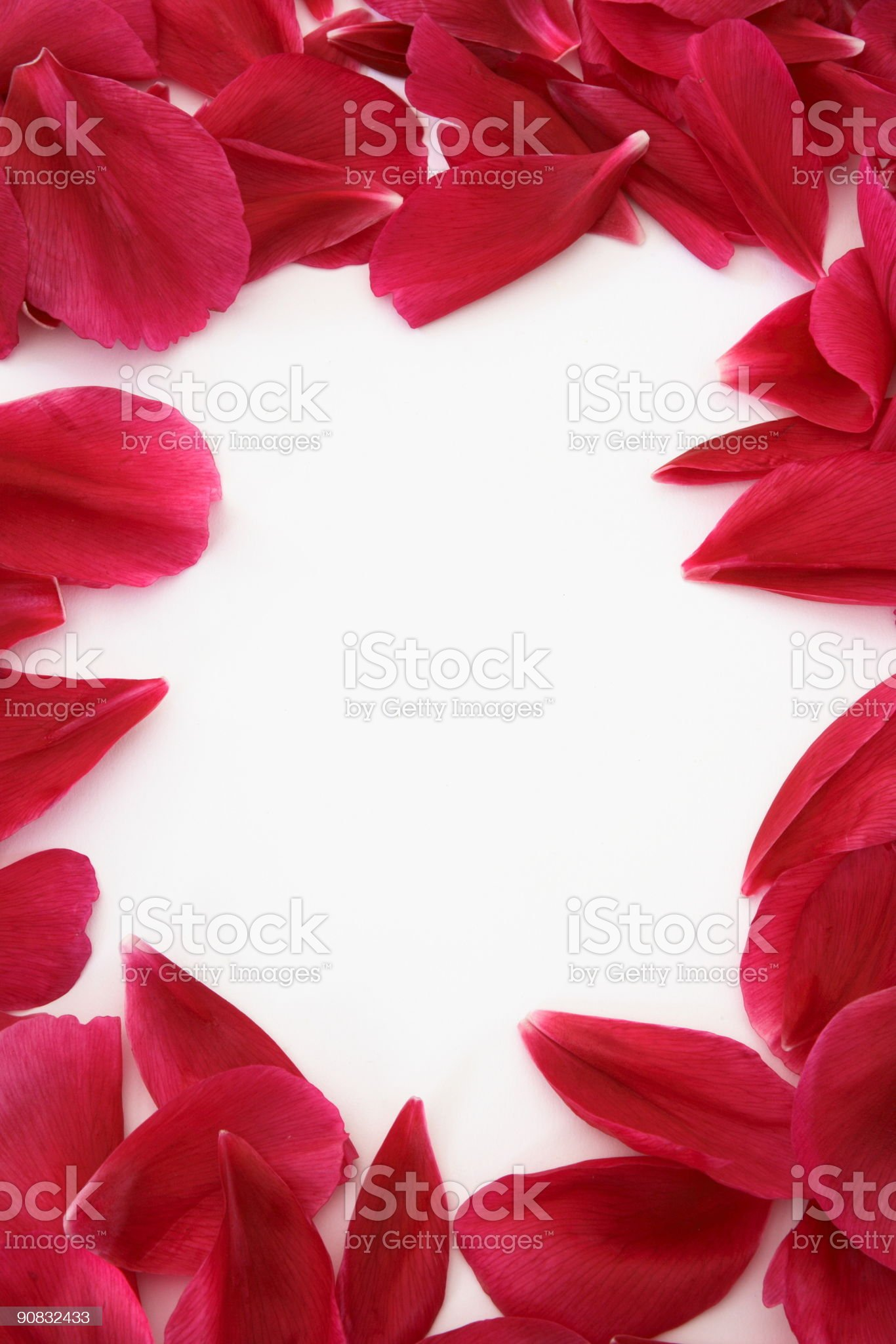 Petal frame royalty-free stock photo