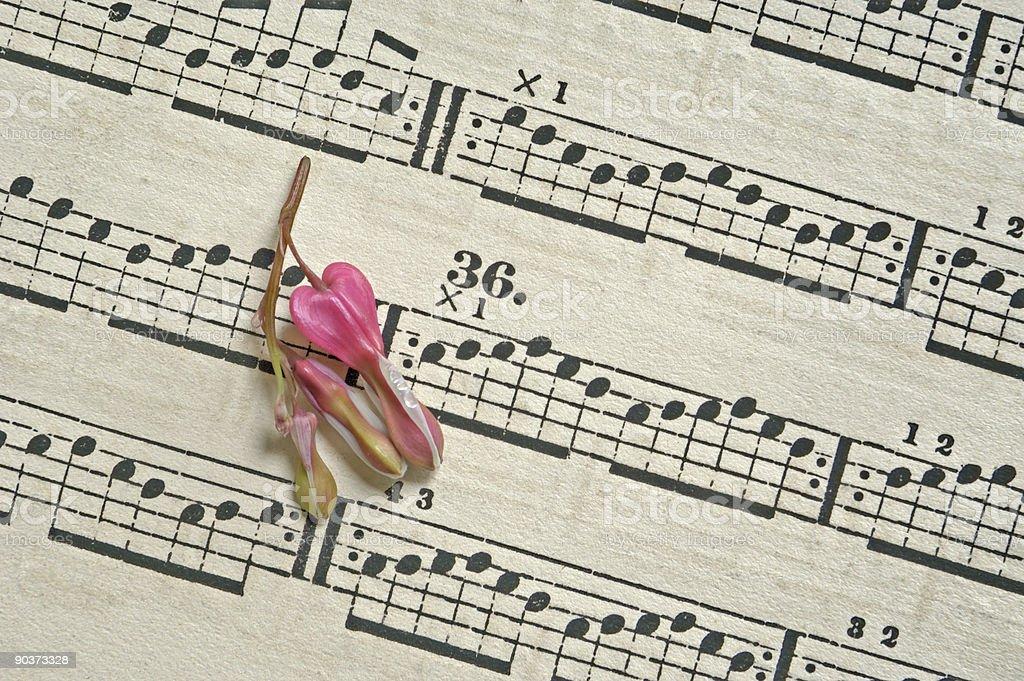 Petal on Music royalty-free stock photo