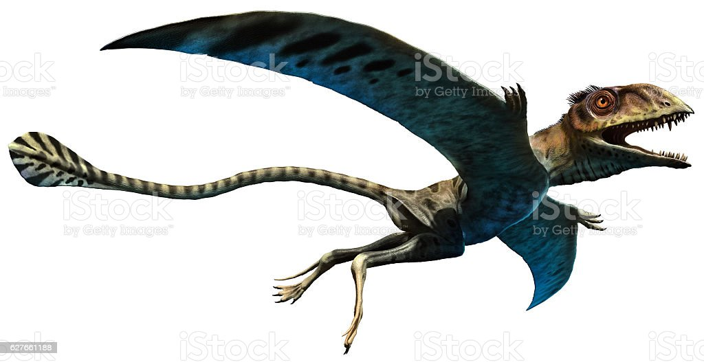 Peteinosaurus stock photo