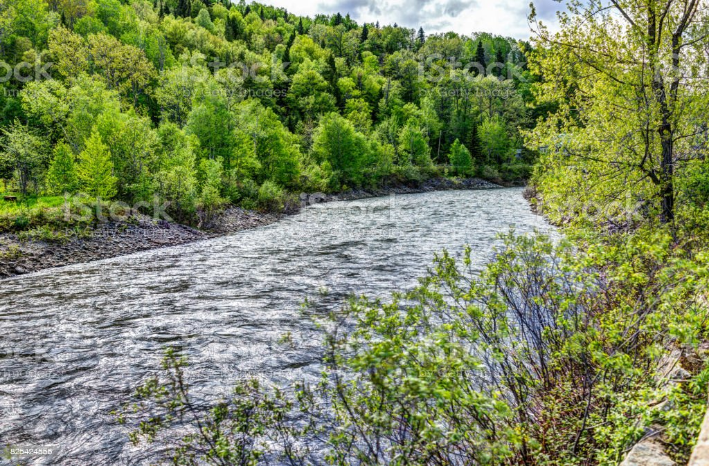 Petit Saguenay river in Quebec, Canada during bright green summer stock photo