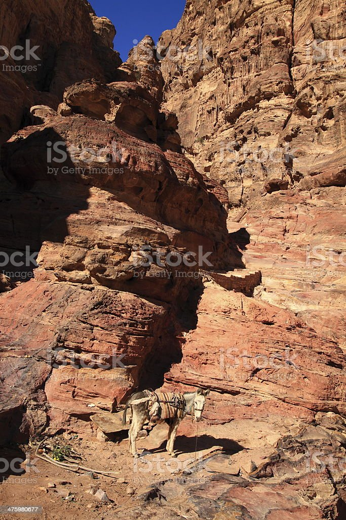 Petra stock photo