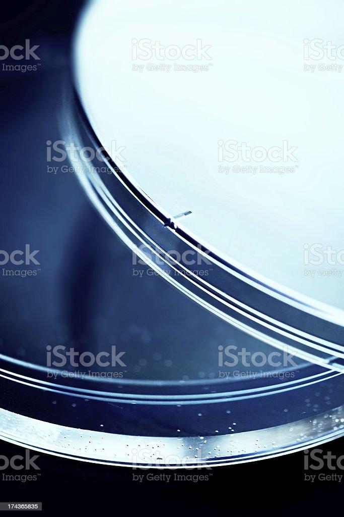 Petri dish. royalty-free stock photo