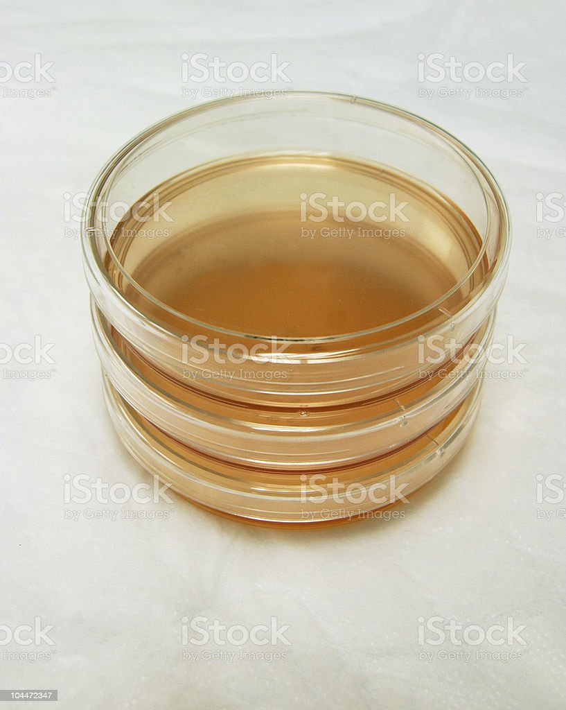 Petri Dish Stack in Lab from Above Vertical royalty-free stock photo