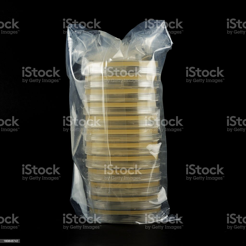 Petri dish stack royalty-free stock photo