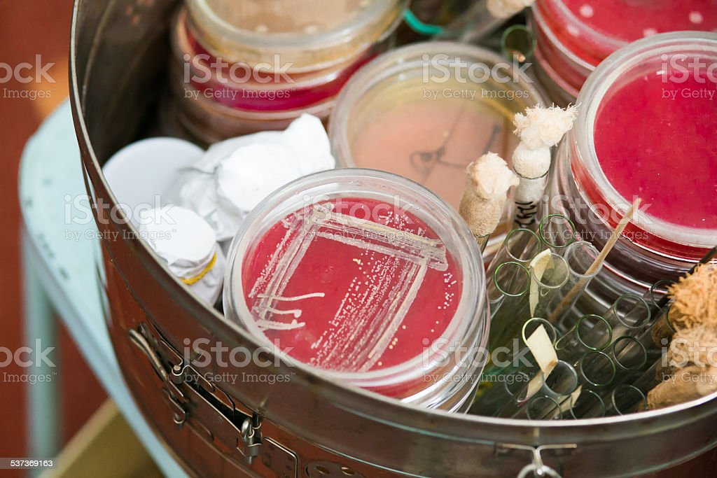 Petri dishes and test tubes stock photo