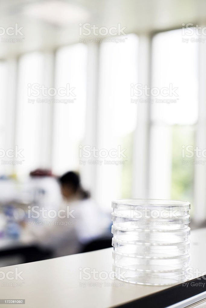Petri dishes royalty-free stock photo
