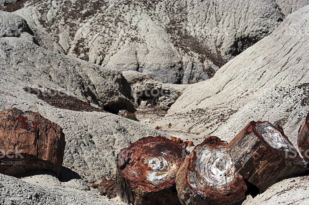Petrified Forest National Park 3 stock photo