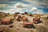 Petrified Forest National Park of Arizona, Southwest USA