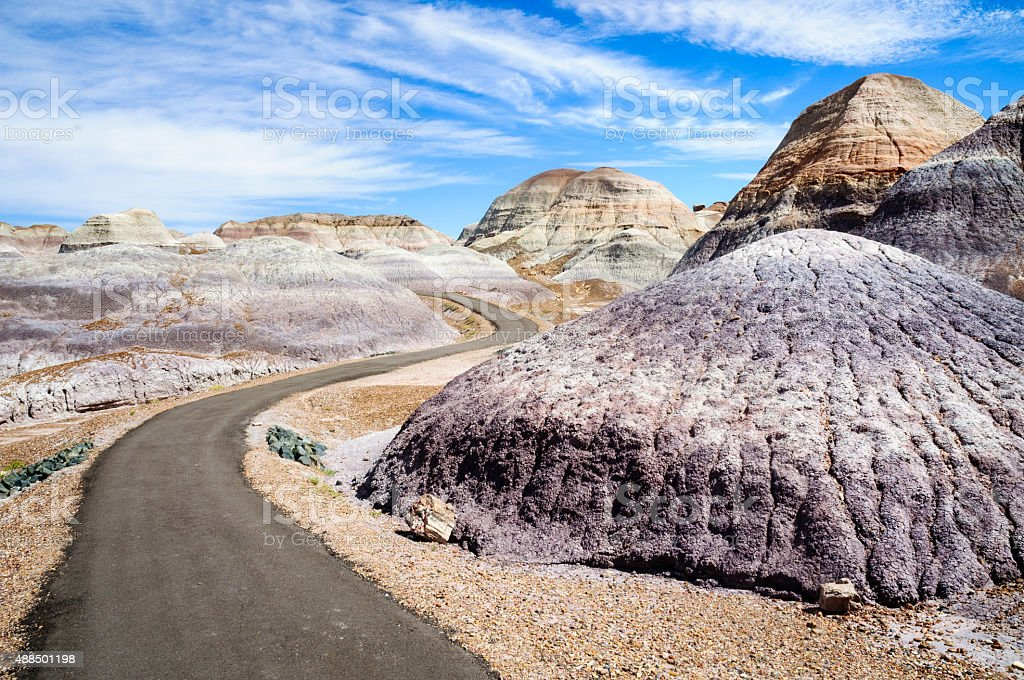 Petrified Forest National Park stock photo