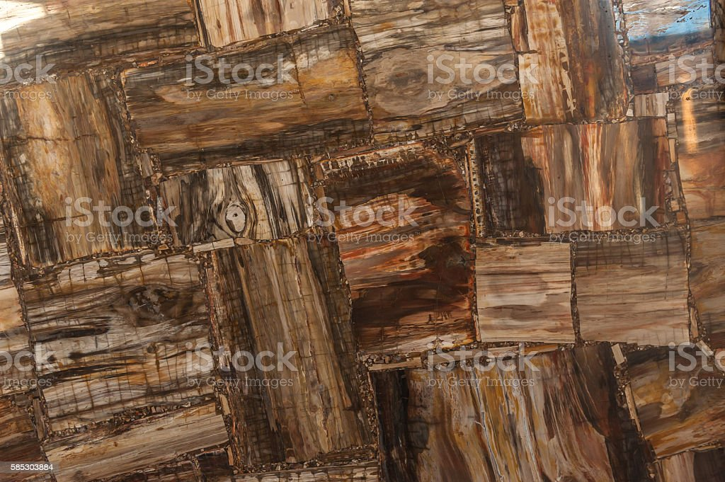 Petrified Wood stone Texture stock photo