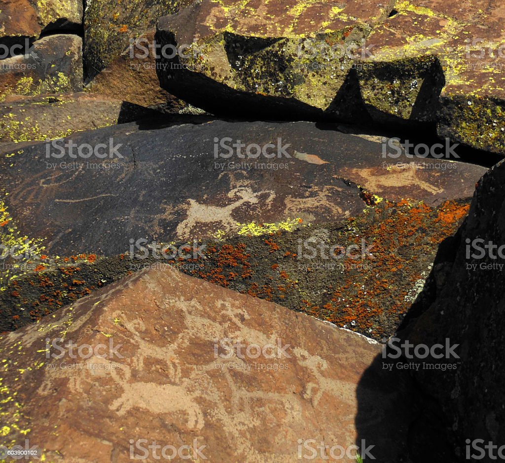 Petroglyph Rams stock photo
