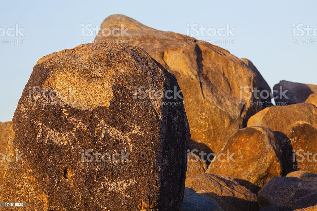 Petroglyphs in Saguaro National Park royalty-free stock photo