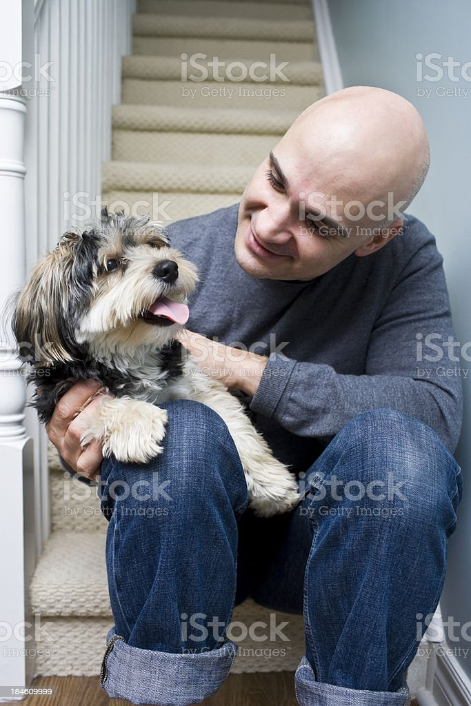 Pets royalty-free stock photo