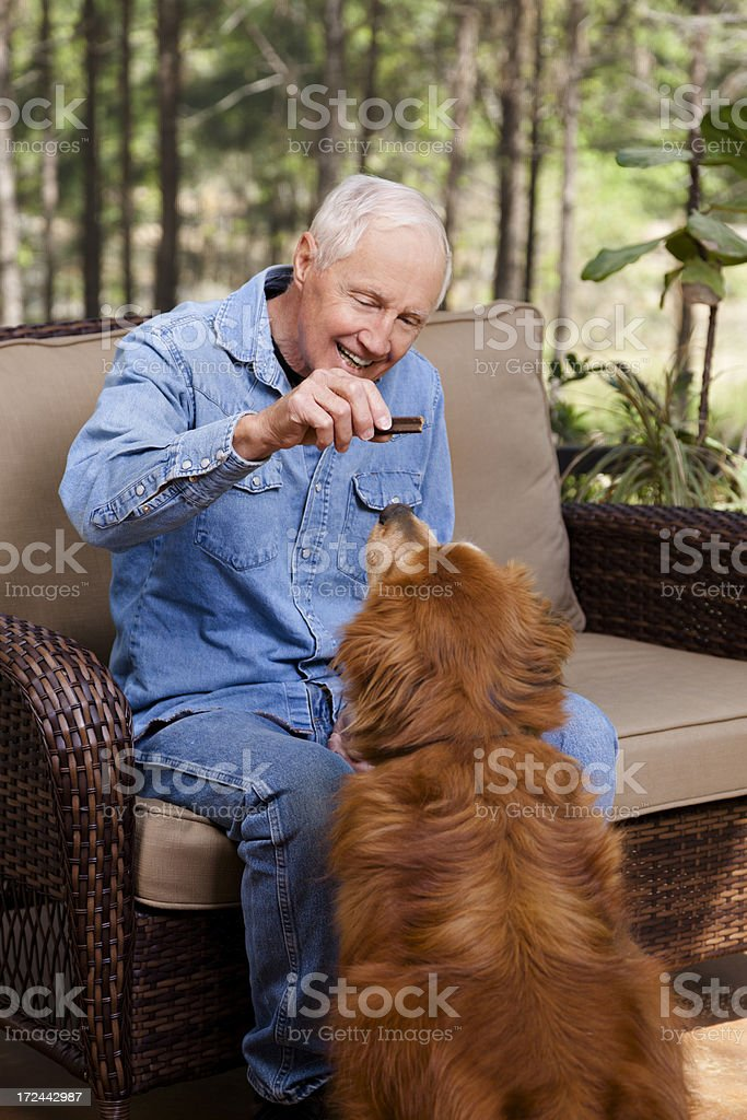 Pets: Senior man giving the house dog a treat royalty-free stock photo