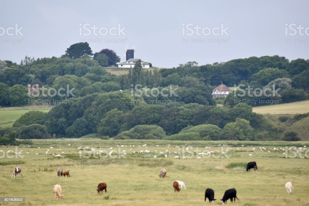 Pett Level Marshes stock photo