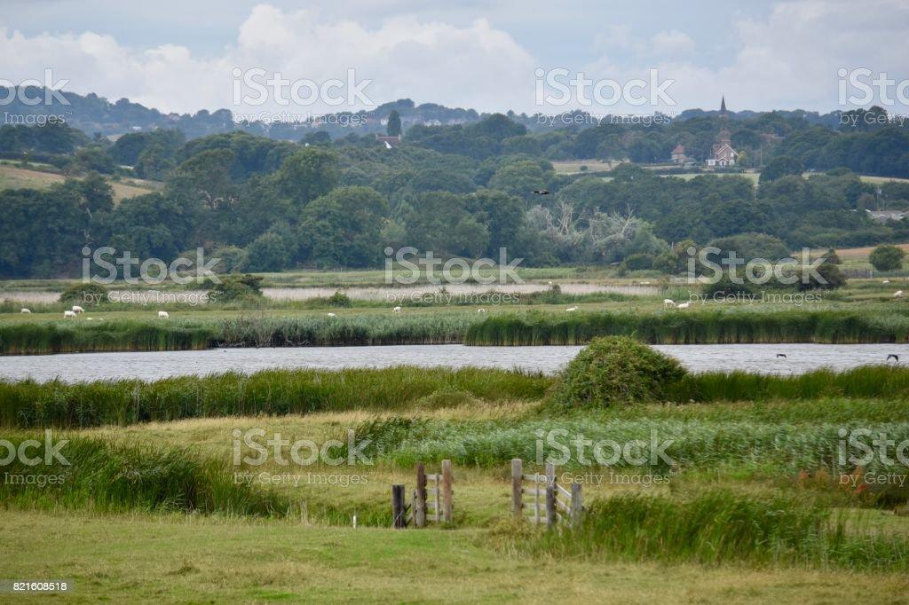 Pett Level Marshland stock photo