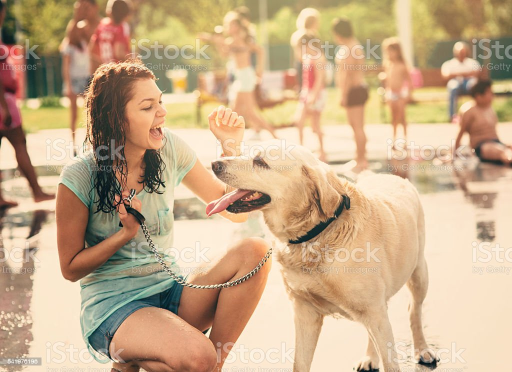 Petting a dog under a fountain stock photo
