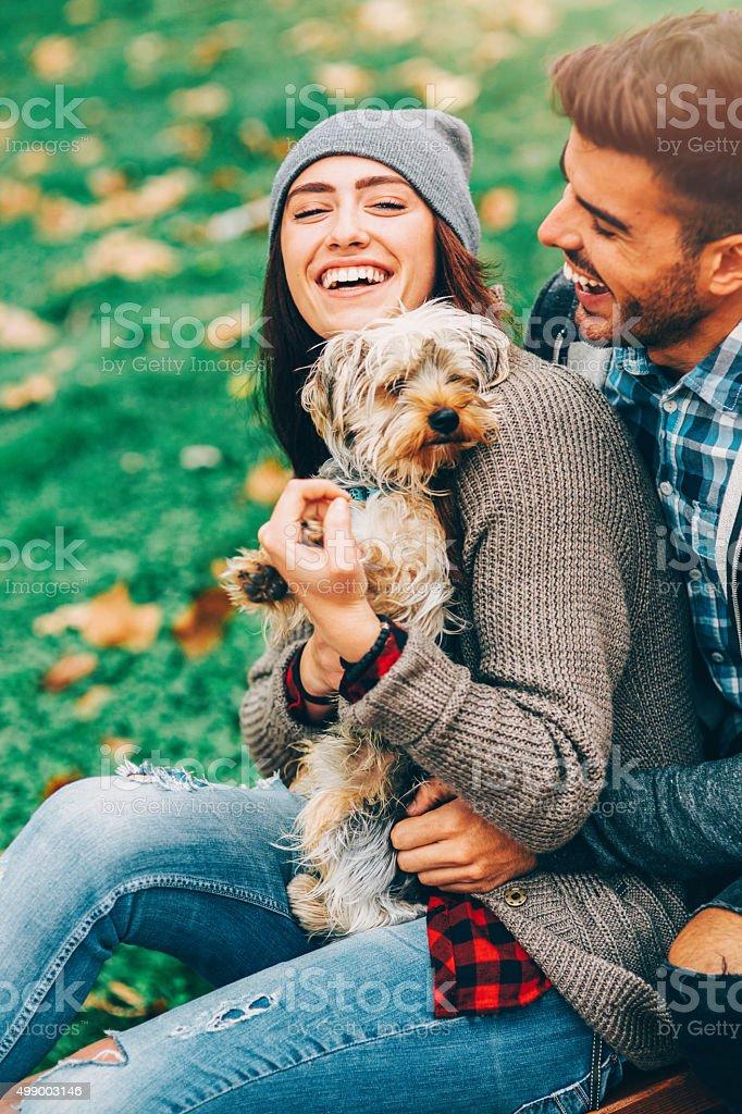 Petting The Dog stock photo
