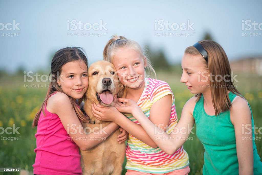 Petting Their Dog at the Park stock photo
