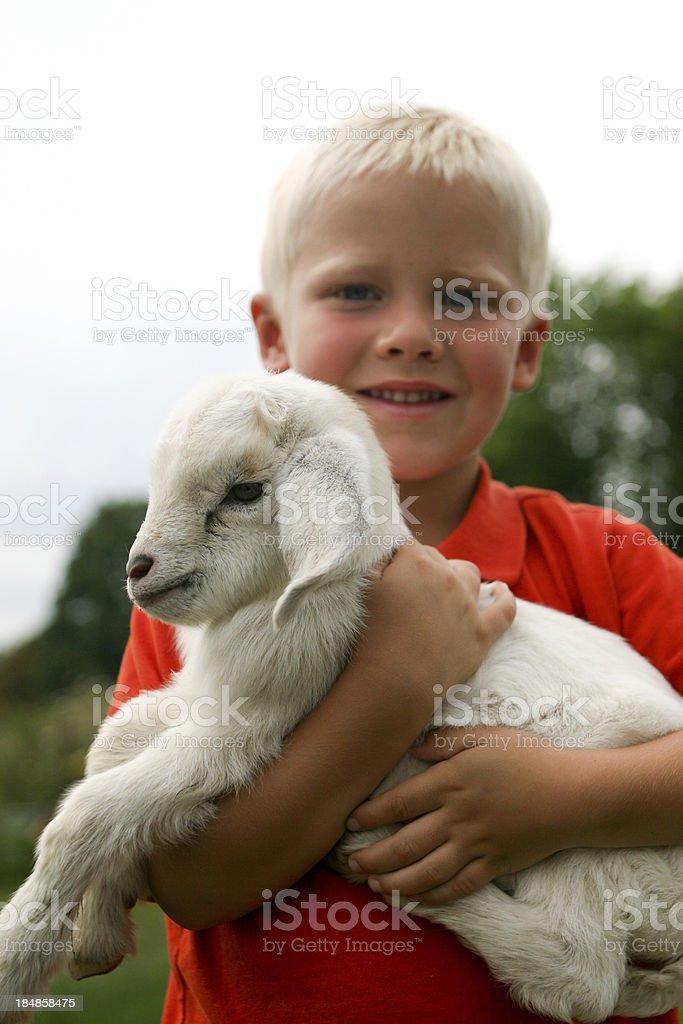 Petting Zoo Child stock photo