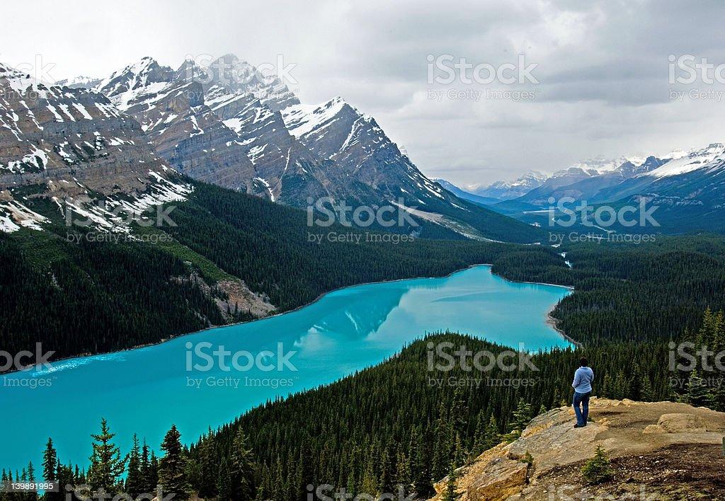 Peyto lake at spring stock photo
