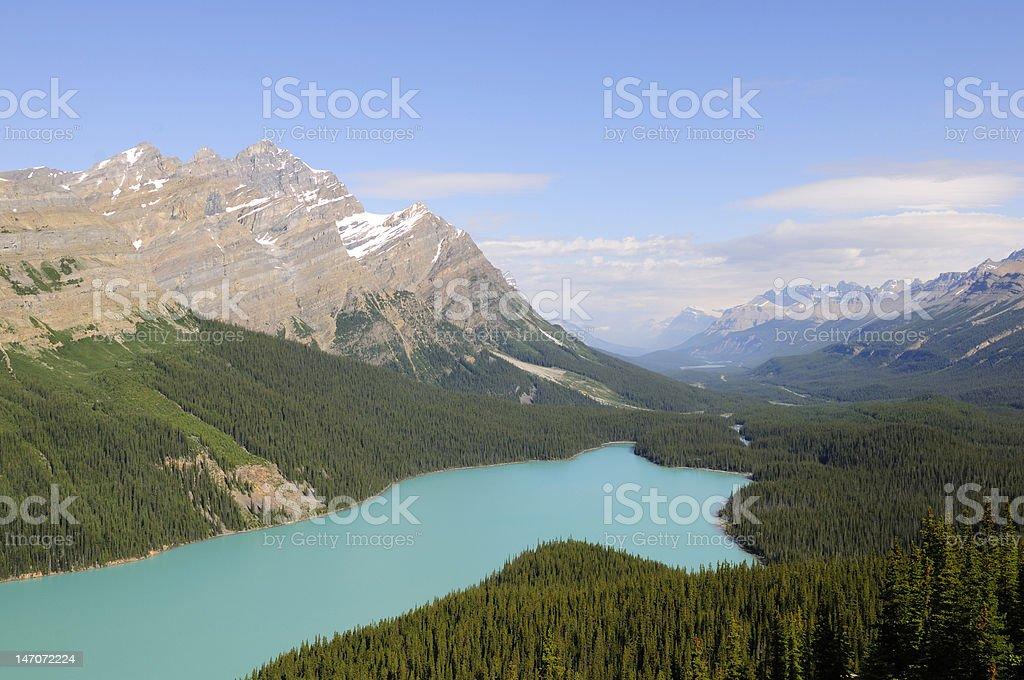 Peyto Lake, Banff National Park royalty-free stock photo