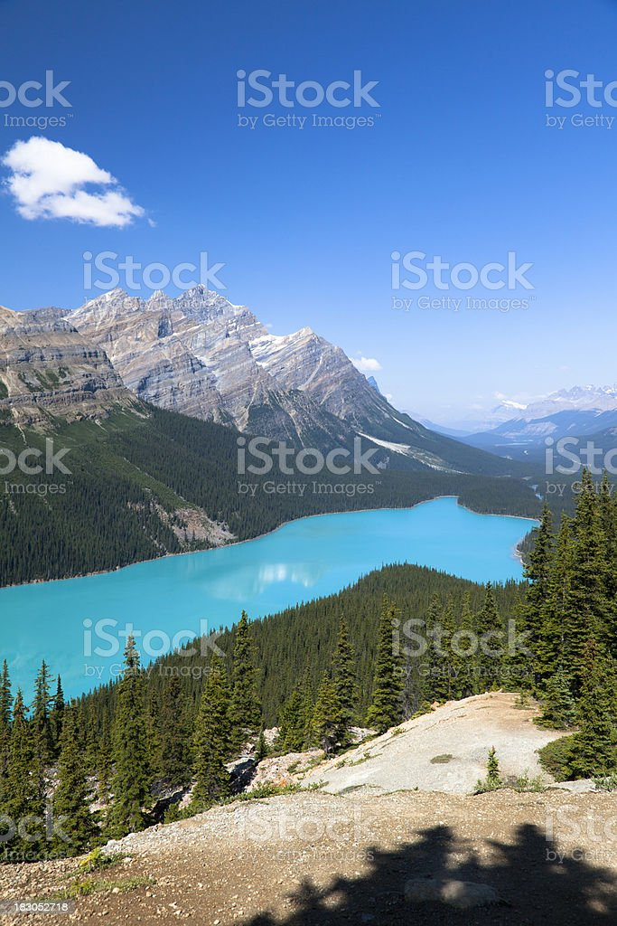 Peyto Lake, Banff National Park stock photo