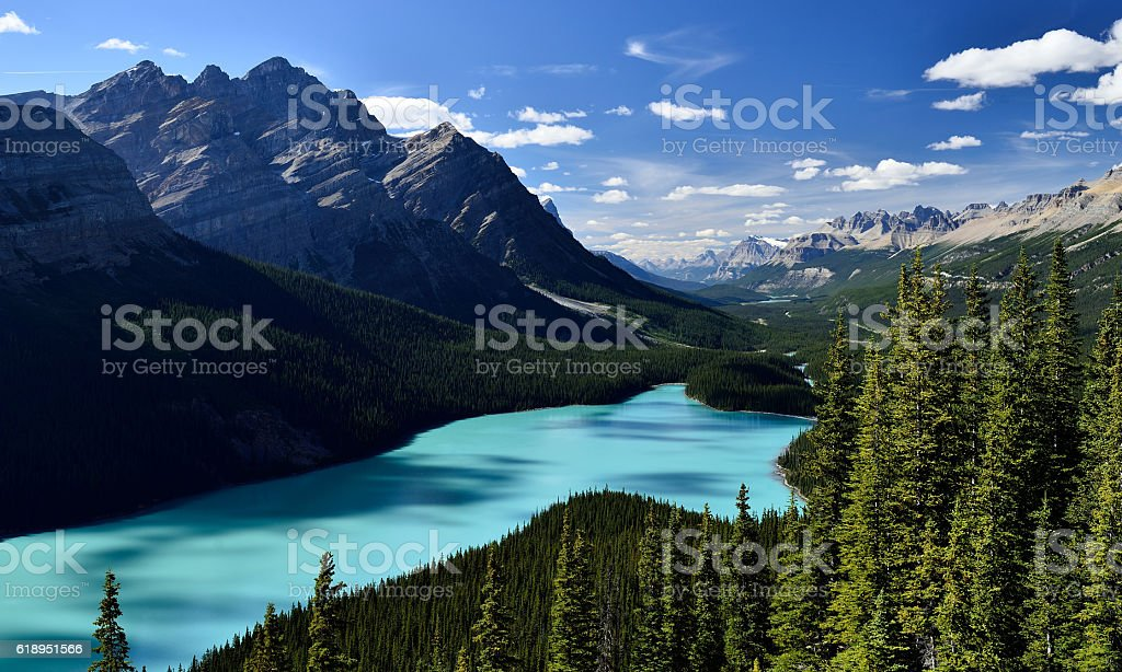 Peyto Lake Banff National Park stock photo