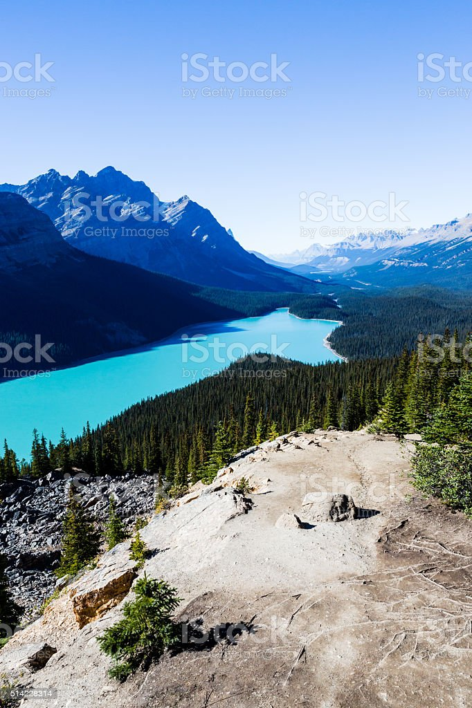 Peyto Lake, Banff National Park, Rocky Mountains, Alberta, Canad stock photo
