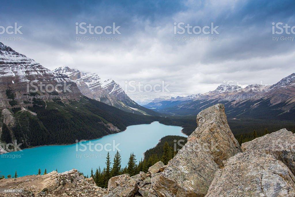 Peyto Lake, Canadian Rockies, Icefield Parkway. stock photo