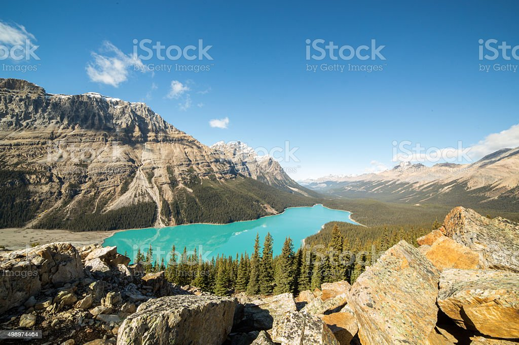 Peyto lake in Alberta, Canada. Rocky mountains on the landscape. stock photo