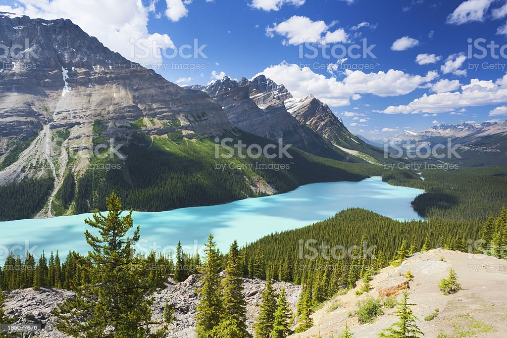 Peyto Lake Landscape stock photo