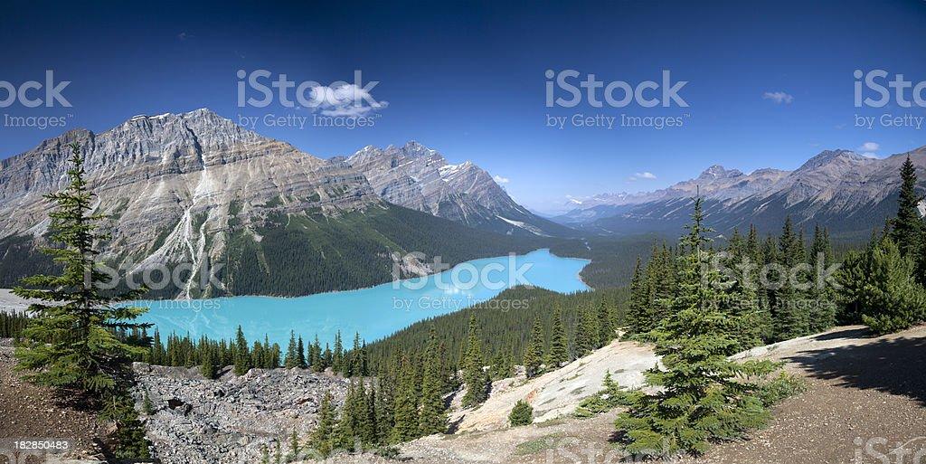 'Peyto Lake Panorama, Banff National Park' stock photo