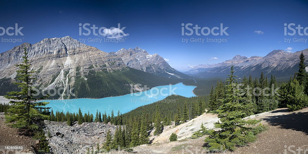 Peyto Lake Panorama, Banff National Park stock photo