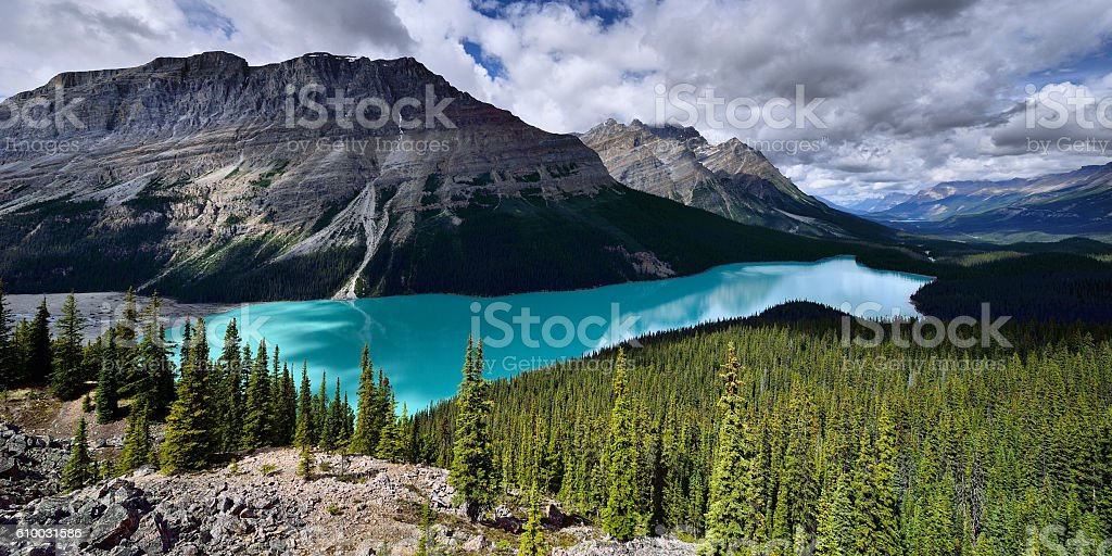 Peyto Lake Panorama stock photo