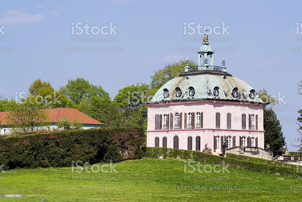 Pheasant Castle Moritzburg Saxony stock photo